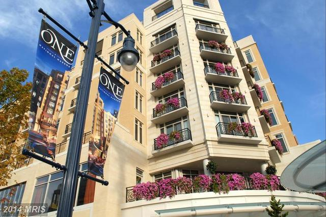 155 Potomac Passage, Unit 414 Image #1