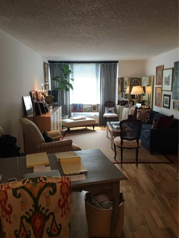 355 South End Avenue, Unit 4M Image #1