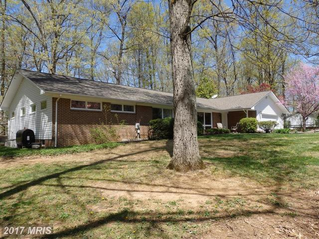 4194 Windy Hill Drive Image #1