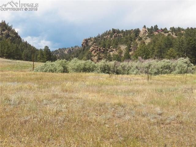 525 Spring Valley Drive Florissant, CO 80816