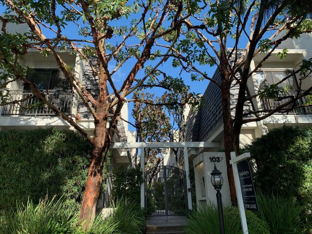 1037 16th Street, Unit 7 Santa Monica, CA 90403