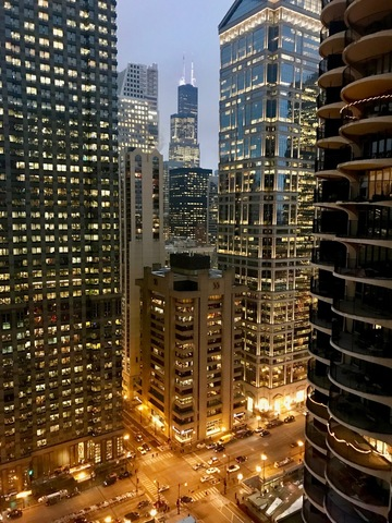 300 North State Street, Unit 3735 Chicago, IL 60654