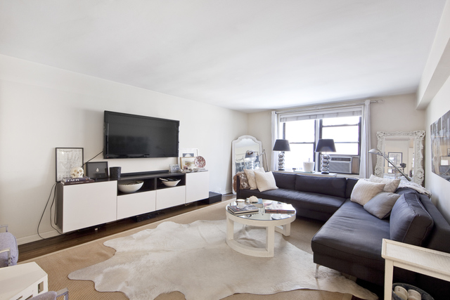 60 East 9th Street, Unit 528 Image #1