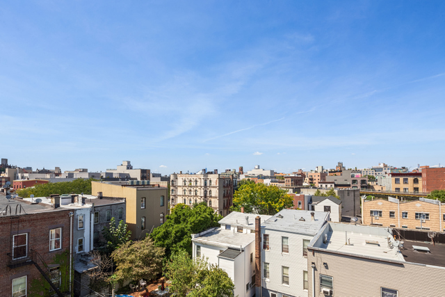 539 Hart Street, Unit PH Brooklyn, NY 11221
