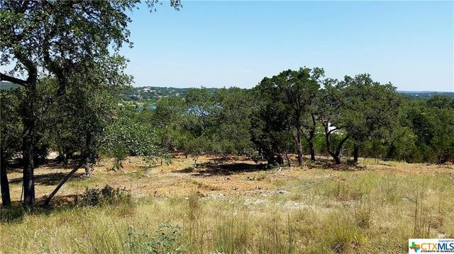 2221 Bella Vista Canyon Lake, TX 78133