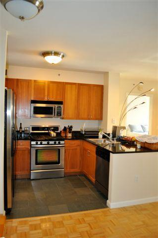20 River Terrace, Unit 14L Image #1