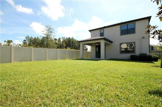 1999 Nature View Drive Lutz, FL 33558