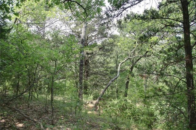 Lot109 Emerald Sound Boulevard Oak Point, TX 75068