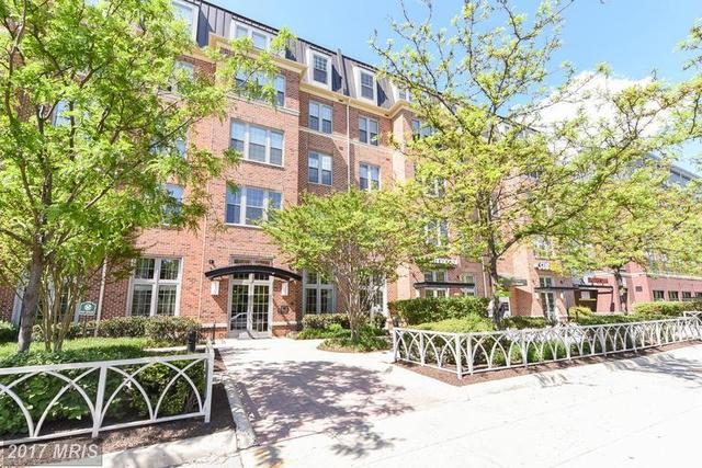 1391 Pennsylvania Avenue Southeast, Unit 213 Image #1