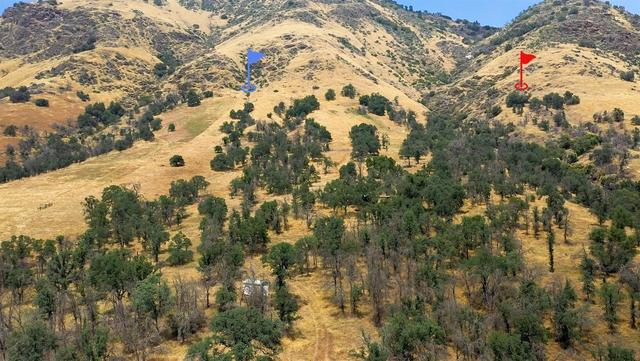33690 East Kings Canyon Road Squaw Valley, CA 93675