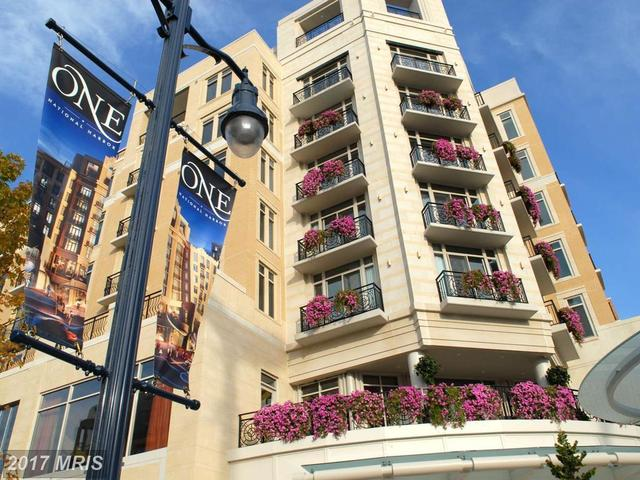 155 Potomac Passage, Unit 701 Image #1