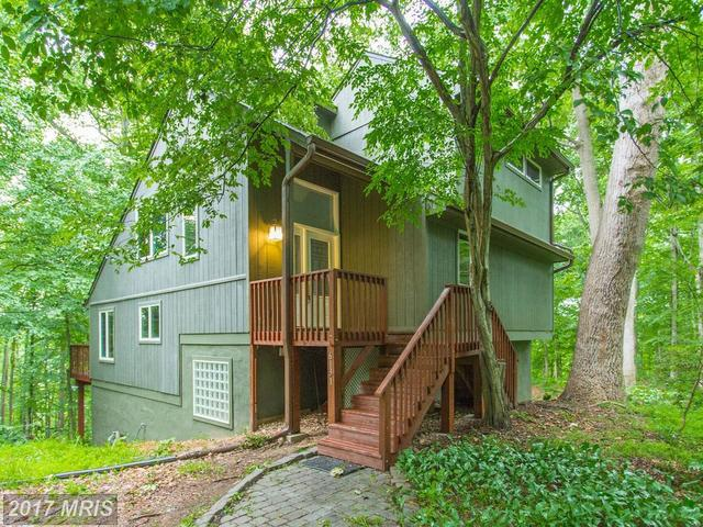 6131 Occoquan Forest Drive Image #1