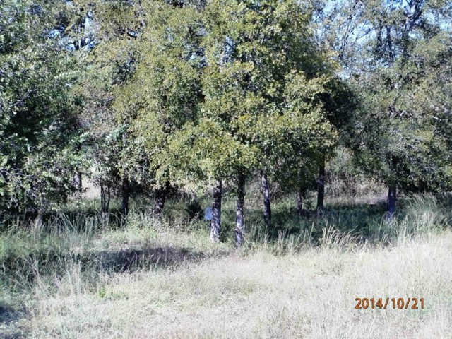 Lot 5 Eagle Point Drive Kingsland, TX 78639