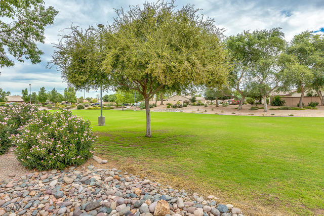 2091 East Fairview Street Chandler, AZ 85225