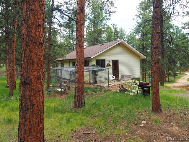 209 Impala Trail Bailey, CO 80421