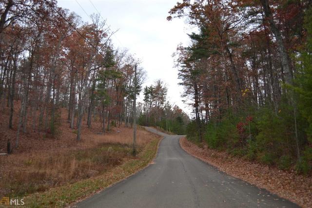0 Chopped Oak Road Ellijay, GA 30540