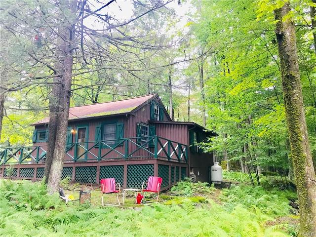 17 East Adirondack Trail Trail Smallwood, NY 12778