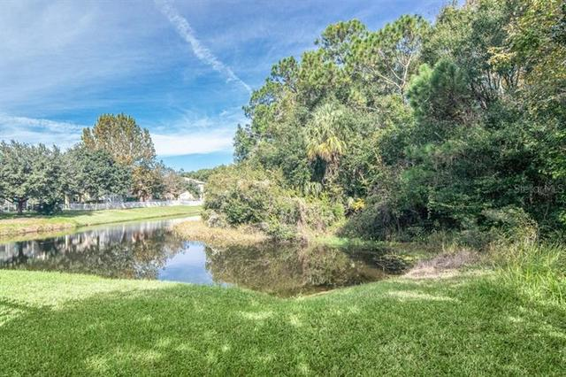 2424 Spring Hollow Loop Wesley Chapel, FL 33544