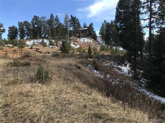 12031 Country Club Drive Conifer, CO 80433